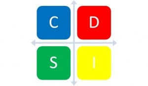 DISC ASSESSMENT GRID